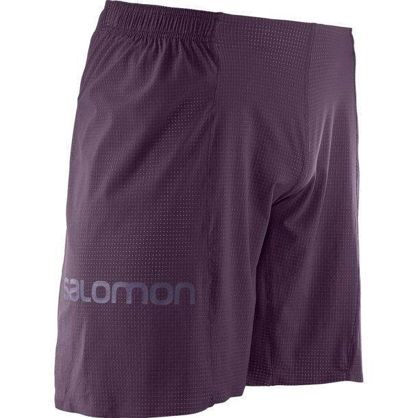 SALOMON S Lab Short 9 Maverick