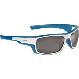 Alpina Chill ICE CM+ Gletscherbrille