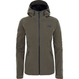 The North Face Damen Apex Flex Gtx Jacke