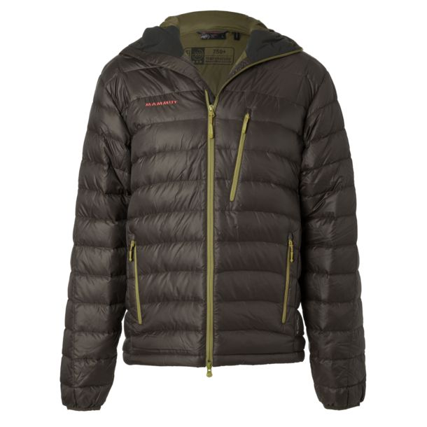 Mammut Men's Broad Peak Hoodie Jacket bison S