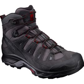 Salomon Men's Quest Prime GTX Shoe