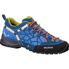 Salewa Men's Wildfire Pro Shoes