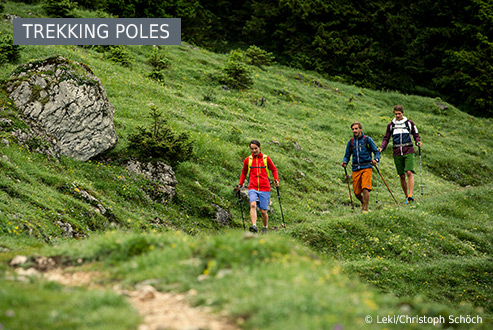 Buy Trekking poles secure and conveniently at Bergzeit